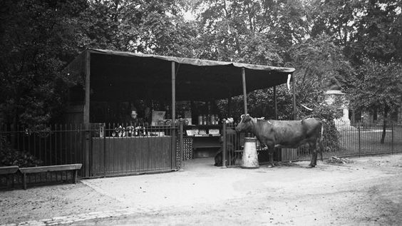 Refreshment Stall in St James' Park, c1910