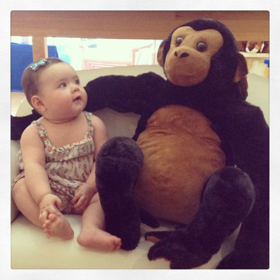Go Bananas with this Mischievous Mate!!! #colibribebe #potd #chimpanzee #stuffedanimal #cute #love #friends4ever #weloveclients