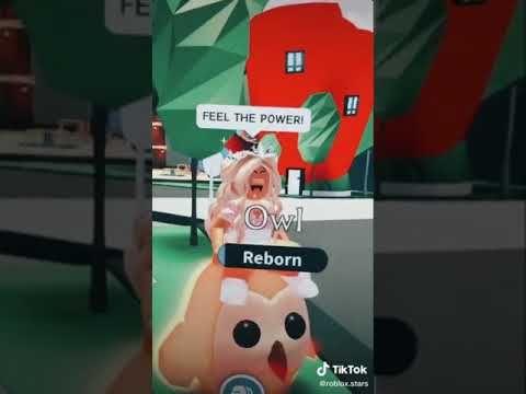 What S My Name Adopt Me Tik Tok Youtube In 2021 Tik Tok Video Roblox Adoption