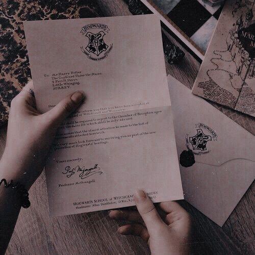 Harry Potter Harry Potter Marathon Harry Potter Movie Night Harry Potter Theme