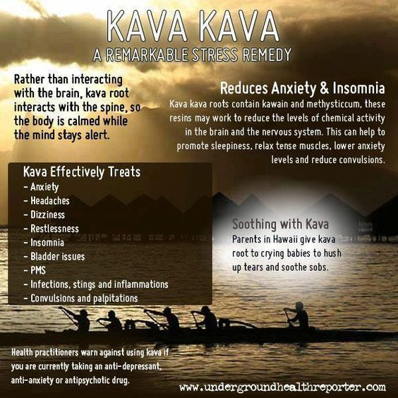 Kava Kava AMAZING!!! I heard this stuff was good for all kinds of things. @James Sermons might be good for you too take, boos.