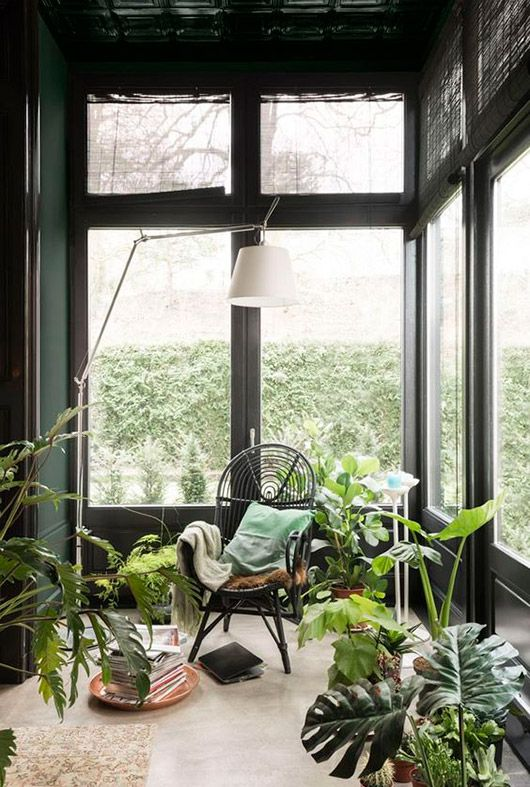 dark green walls in a sunroom
