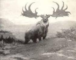 Resultado de imagen para animales extintos hace millones de años