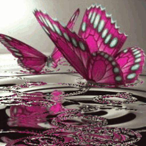 Add Wallpaper To Kindle Fire Butterflies On Water Live Wallpaper Kindle Fire Apps Pink Butterfly Butterfly Gif Butterfly Wallpaper