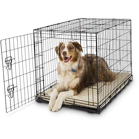 Petco Classic 1 Door Dog Crates Dog Clicker Training Dog
