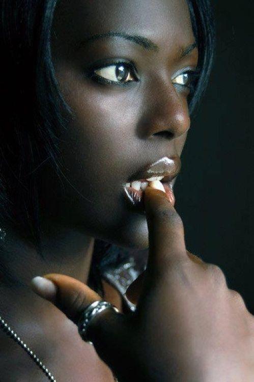 Dark Ebony Fotos