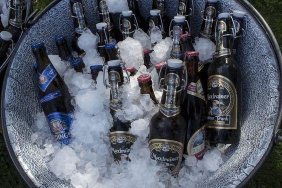 ướp lạnh bia Budweiser trước khi uống