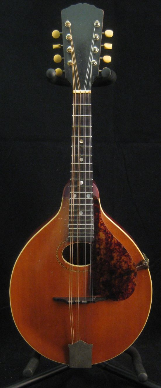 Dog-faced boys Vintage gibson mandolins and Ultra-Purified-FishOil