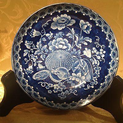 Antique-Flow-Blue-Plate-English-Seashell-Sea-Urchin-Flower-Pattern-Nice