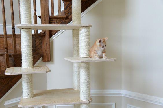 31+ Zoovilla modern folding cat tree ideas in 2021