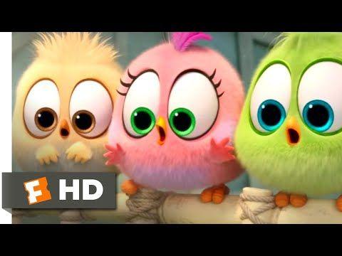 Fandango Halloween 2020 The Angry Birds Movie 2   Wittle Sisters | Fandango Family