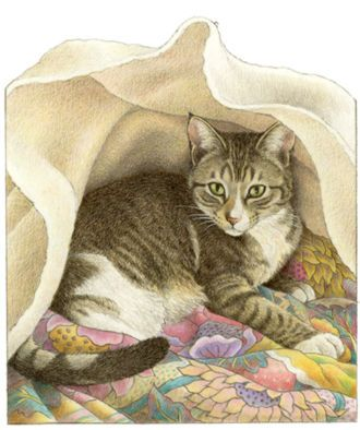 Francien van Westering - kitty under blanket