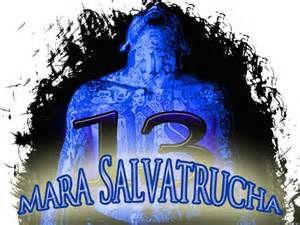 Mara salvatruchA ms-13 4live