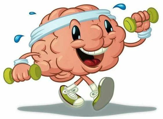 Мозг в пожилом возрасте может работать лучше, чем в молодом - что нужно делать для этого? | Ваш семейный доктор | Яндекс Дзен