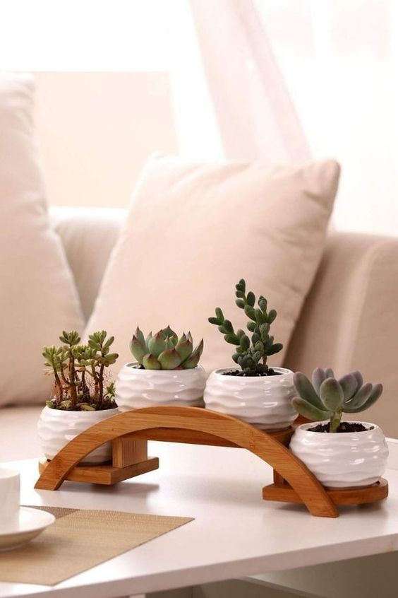 Each planter pot was features a rippling textured exterior, Perfect for holding potted plants, succulent plant, Cactus, herbs,aloe vera plant. Suitable for both indoor and outdoor décor, such as office, balcony, bookshelf,windowsill, dinning table, or create a beautiful, minimalist, tea-light candle display. | This is an affiliate link