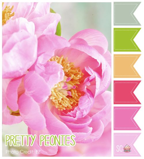Pretty Peonies Color Palette - Inspire Sweetness  http://www.inspiresweetness.blogspot.com/2013/11/pretty-peonies-color-palette.html