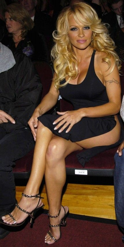 Pamela Anderson Sittin Pretty