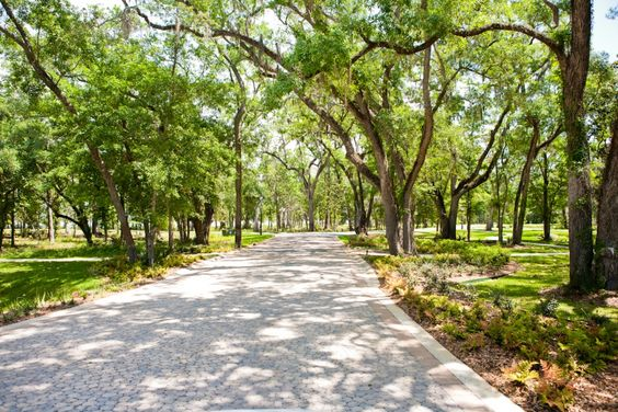 Cobblestone drive carefully integrated in to the existing environment at Churchill Oaks