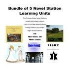 This is a bundle of 5 of my most popular learning stations: Night Novel stations, Princess Bride Novel stations, Lord of the Flies Novel Stations, ...