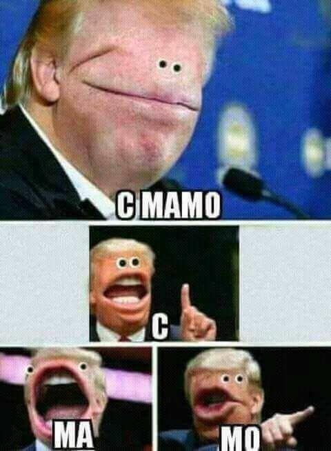 Pin By Lezz On Memes Stupid Memes Funny Memes Stupid Funny Memes