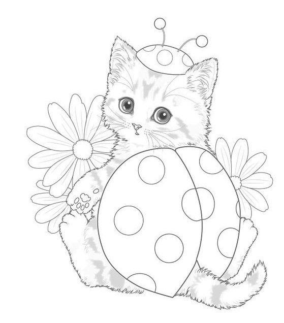 a012624c859602e9010331a52ea1f381 » Christmas Coloring Page Kitten