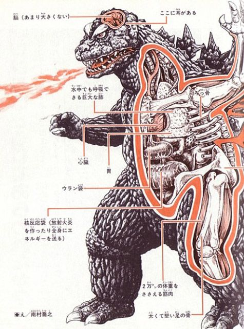 An Anatomical Guide to Monsters, 1967. Text: Shoji Otomo. Illustrator: Shogo Endo.