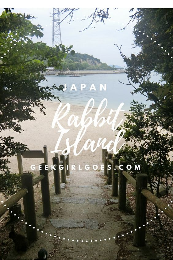 Rabbit Island Japan - Full of Fluffy Bunnies, and...Poison gas--