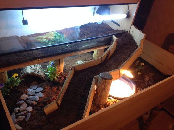 tortoise table                                                                                                                                                      More