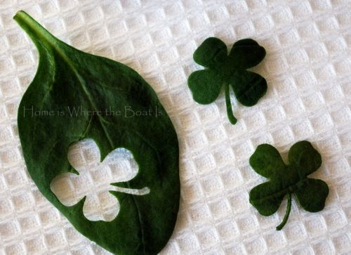 Punch four leaf clovers out of spinach for topping dishes on St. Patrick's Day. Great ideas on this site...