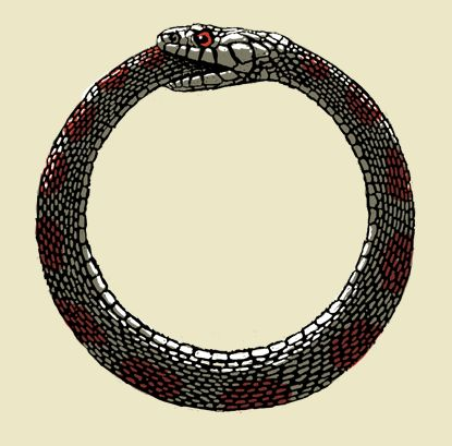 War and pearls on pinterest for Snake eating itself tattoo