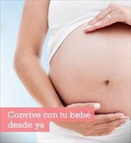 Descubre todo sobre el embarazo y tu bebé