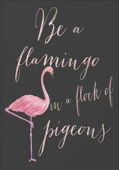 Be a flamingo in a flock of pigeons. Schmuck im Wert von mindestens   g e s c h e n k t  !! Silandu.de besuchen und Gutscheincode eingeben: HTTKQJNQ-2016