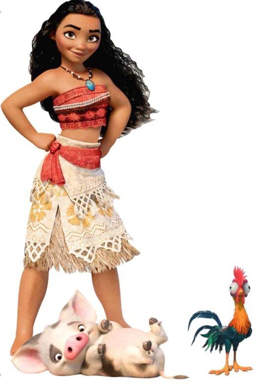 Moana Pua Hei Hei Fotos Da Moana Disney Fofa Fotos Criativas Com Amigas