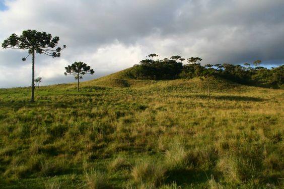 A imagem pode conter: nuvem, céu, grama, montanha, árvore, atividades ao ar livre e natureza