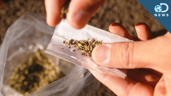 What's The Deal With Synthetic Weed? (+playlist)