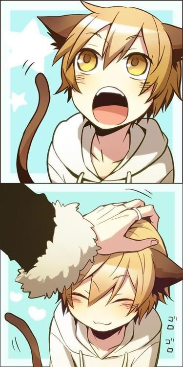(Rp?) *meows at owner till he pets me8 I love it when he pets my head, it makes me feel so happy!