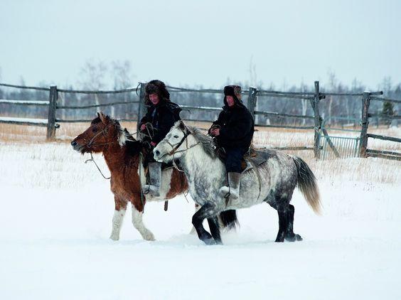 Criadores de Yakutia