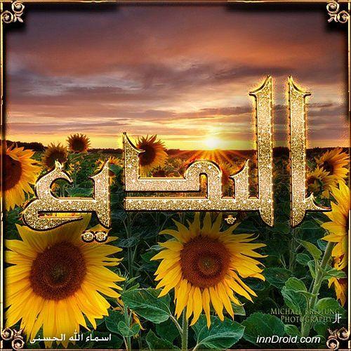 تصاميم طبيعي ورد دوار الشمس مع اسم من اسماء الله الحسنى بعنوان البديع Design Sun Flower With A Name Of Allah Albadeea Our God Now D Flowers Art Painting
