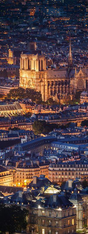 Lumières de Notre Dame, Paris: