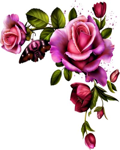 ROSE BORDER CORNER | FRAMES / BORDERS / CORNERS ...