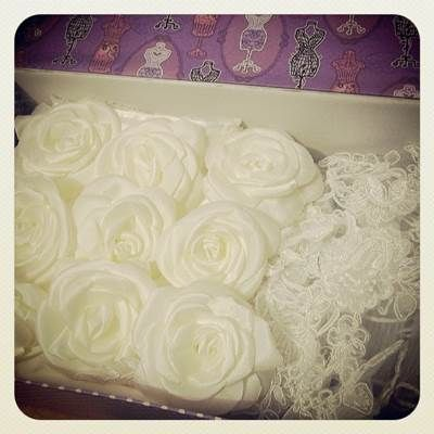 My box and my recycled wedding dress mentioned in blog for Wedding dress preservation chicago