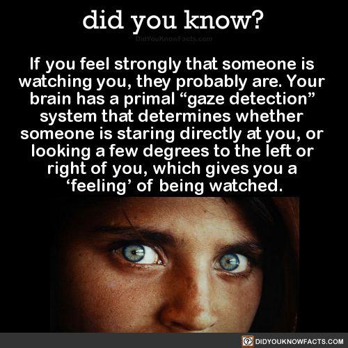 Als je het gevoel hebt dat iemand naar je kijkt.