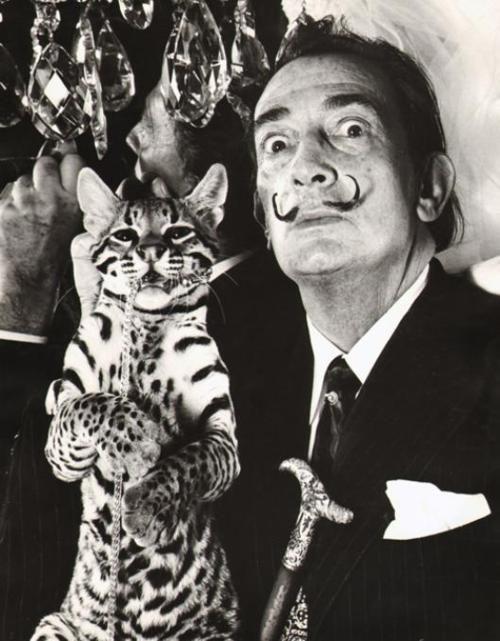 Salvador Dali y Babou. Su mascota favorita era un ocelote, un felino, con quien viajaba con frecuencia.
