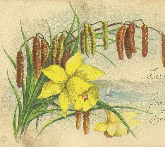 Bright Yellow Daffodils and Pussy Willows by TheOldBarnDoor