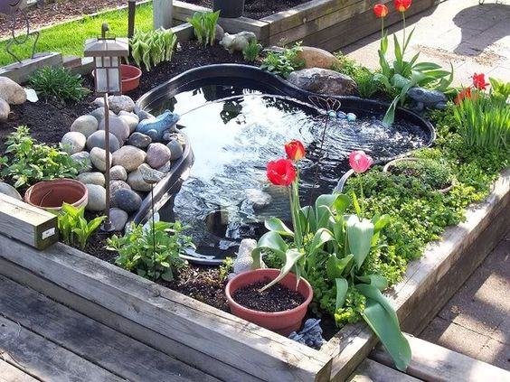 Raised pond ponds and small gardens on pinterest for Raised fish pond ideas