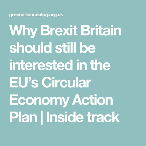 Why Brexit Britain should still be interested in the EU's Circular Economy Action Plan | Inside track
