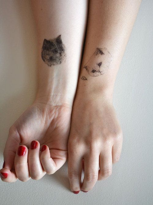 temporary tattoos - set of 7 fake cat tatts by harrietgray/illustrated goodness