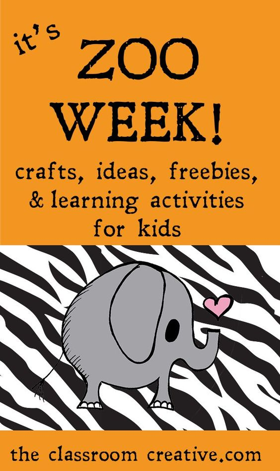 life science lesson on animals k Kindergarten science skills life science | earth science | physical seasonal changes lesson plans from scholastic - the activities in this theme unit.