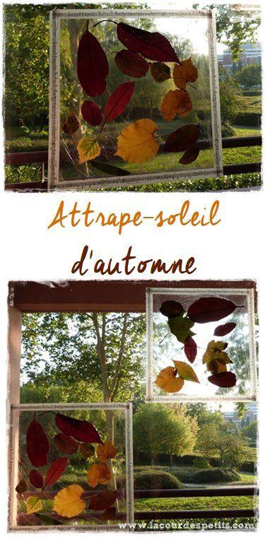 Une activité d'automne pour les enfants très facile à réaliser et économique ! Découvrez cette magnifique décoration de fenêtre, un attrape-soleil naturel.