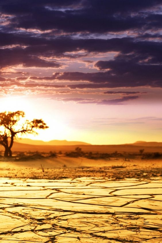 640-Africa-Lake-l